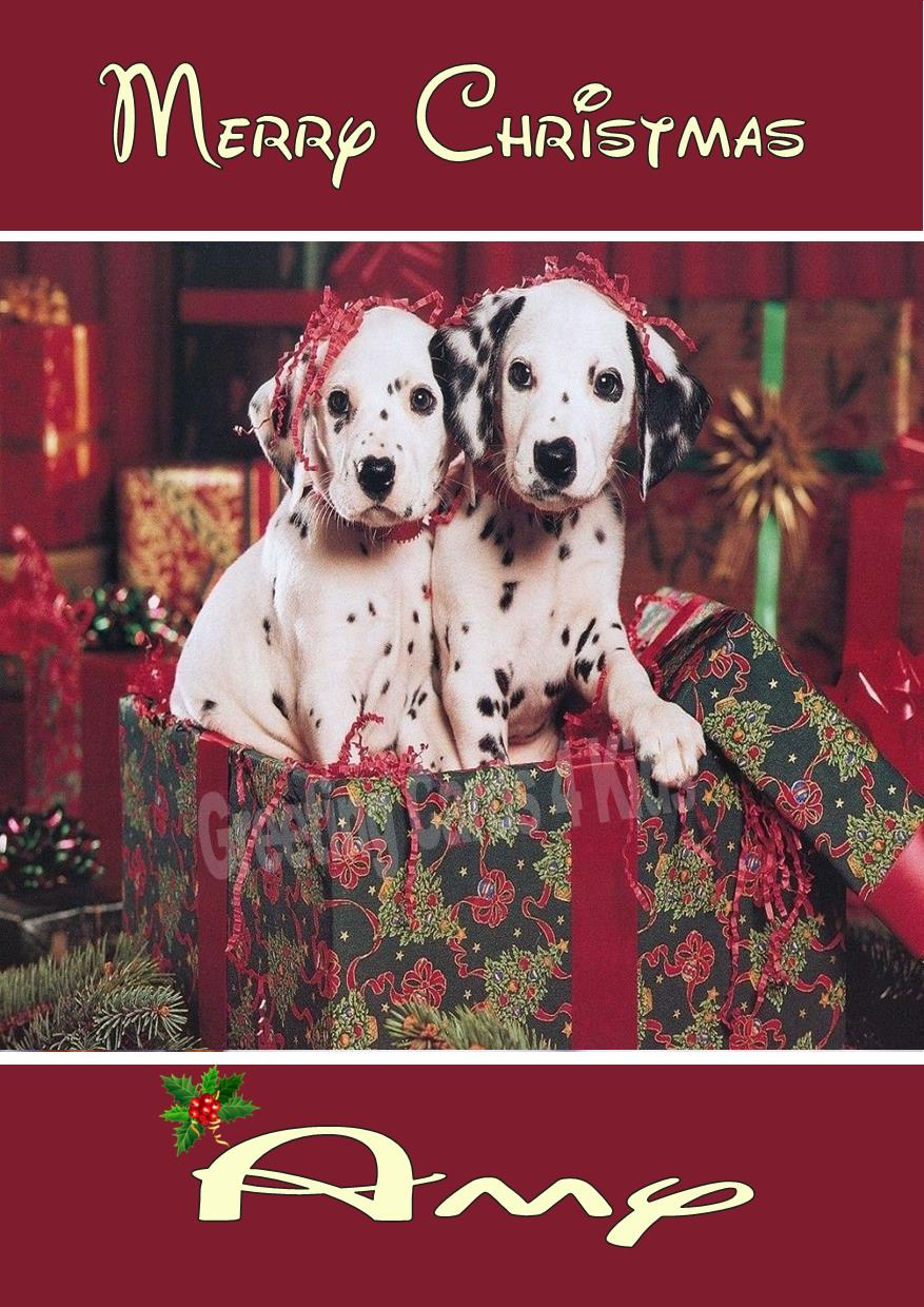 personalised dalmatian puppies christmas card